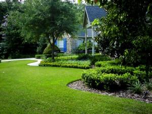 dunedin_residential_landscaping_tbec